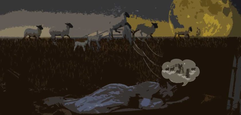 Jak rychle usnout - ovečky
