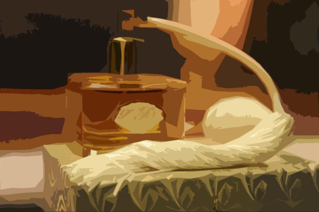 Toaletní voda - parfém