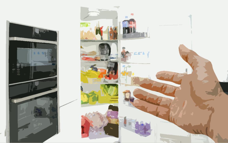 chladnička výběr