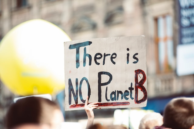 Demonstrace a plakát There is NO Planet B
