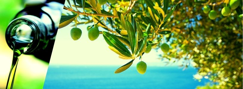 Olivový olej na vlasy
