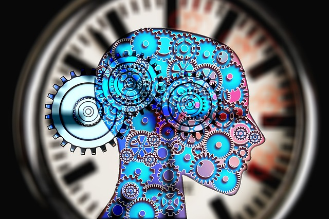 Mechanismy a procesy v mozku člověka