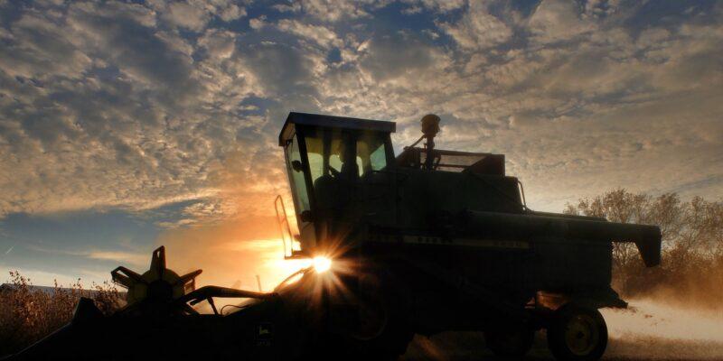 Zemědělství je významným producentem uhlíkové stopy
